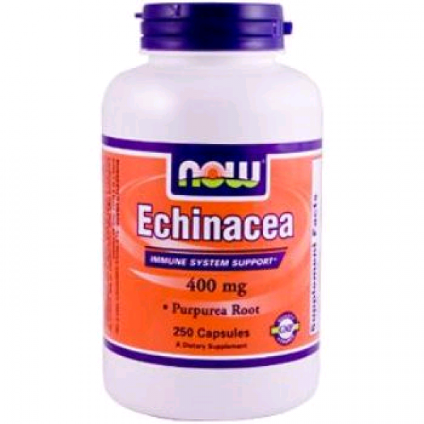 NOW Echinacea (Ekinezya) - 400mg  250 Kapsül